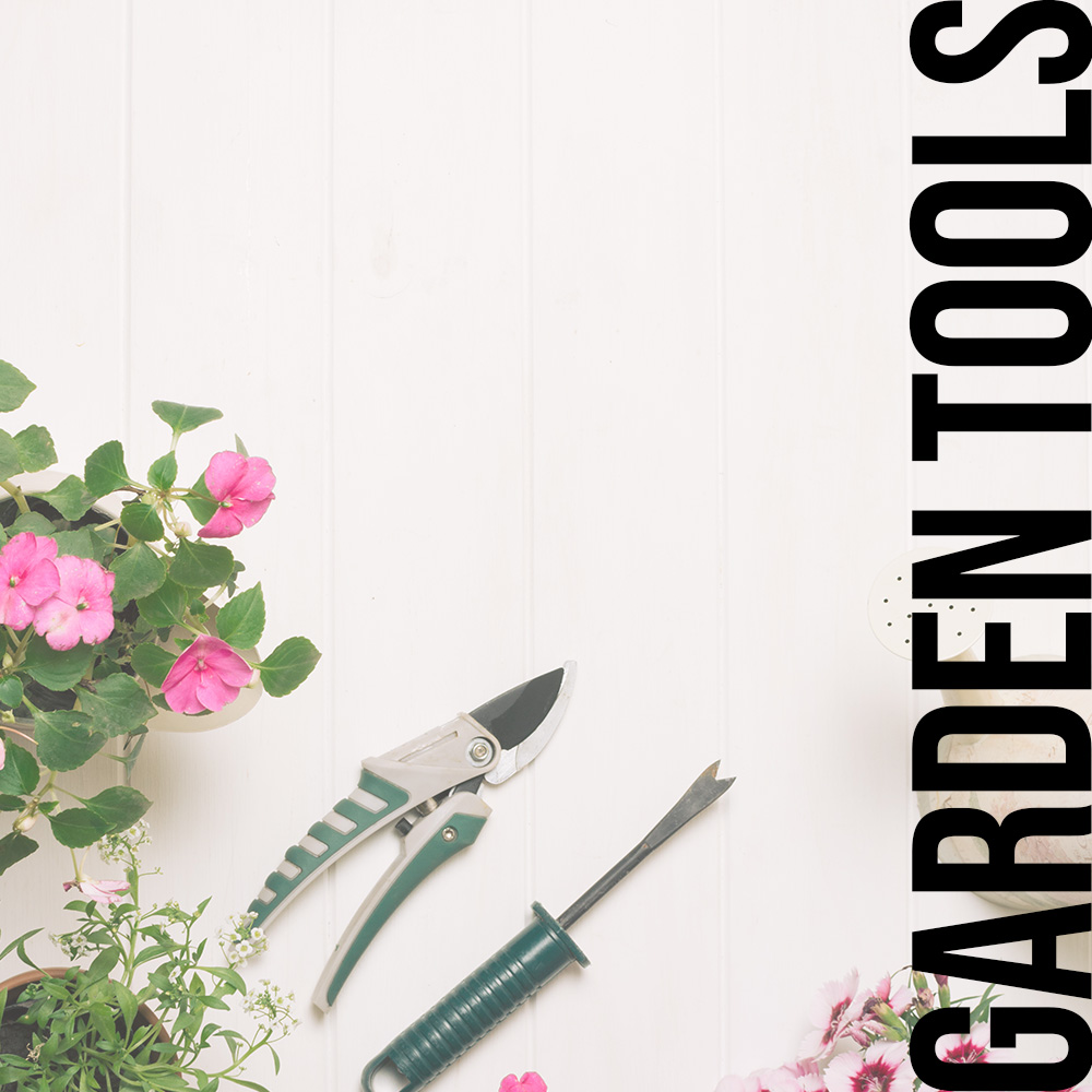 Pruning Equipment and Garden Tools (อุปกรณ์ตัดแต่งสวน)